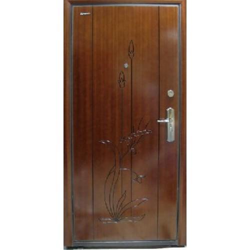 купить входную дверь порошок
