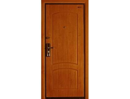 Входная металлическая дверь порошок модель SD-79
